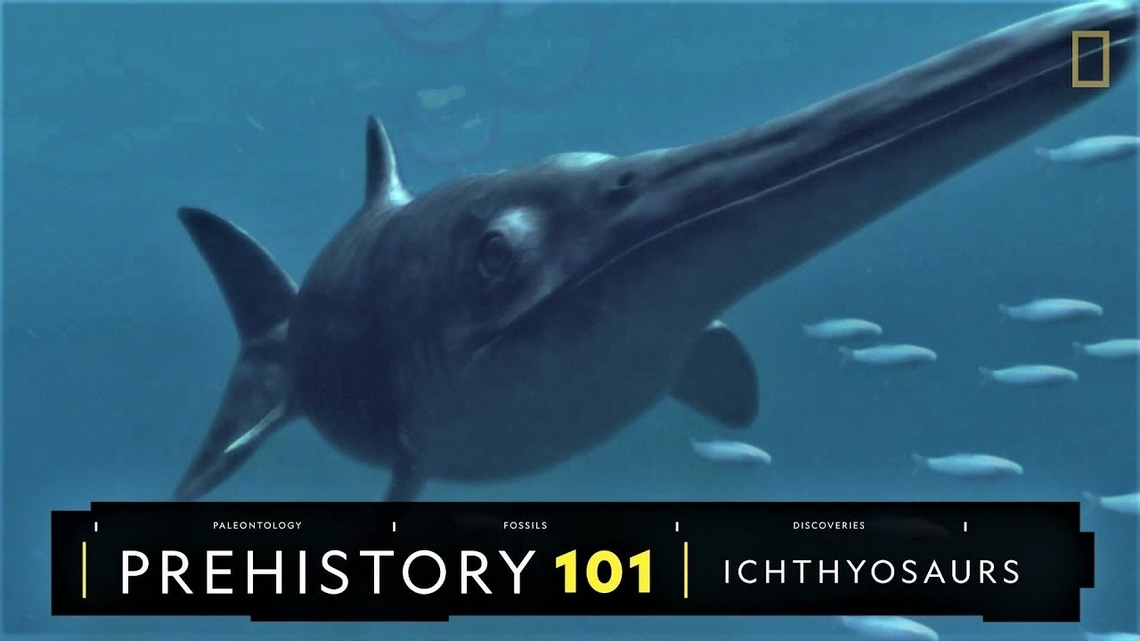 101史前教室:叱吒遠古海洋的魚龍