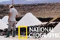 蘭薩羅特島的傳統鹽田
