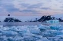 南極半島溫度創史上新高!但這記錄恐怕維持不久
