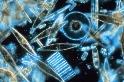 小浮游立大功:歷時最久的全球海洋調查 從浮游生物記錄窺探海洋健康