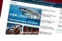 101自然教室:我們都誤會鯊魚了!