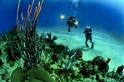 酷知識測驗:???大海底下的趣味知識???