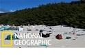 美麗無人島上竟有3800萬塊塑膠垃圾
