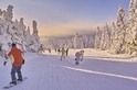 冰與火奏鳴曲─藏王樹冰