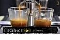 101科學教室:咖啡因