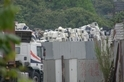 自由的代價:當垃圾淹沒香港