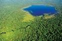 種回森林,與地球共存