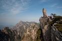 世界自然保護聯盟發布「綠色名錄」