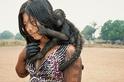 亞馬遜的捍衛者:凱亞波人