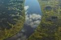 狂野溼地:水光雲影