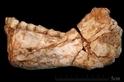這些早期人類生活在30萬年前——但卻有著現代臉孔