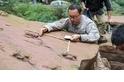 邢立達:為了發現中國的恐龍,他正在和推土機賽跑