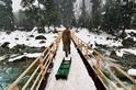 雪中交通:拉雪橇