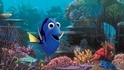 《海底總動員 2》上映 以保育代替飼養