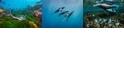 【國家地理系列講座】世界著名潛水勝地的海洋生態保育策略