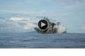 機器人的鯊魚火山探險