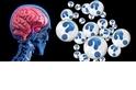酷知識測驗:考驗大腦的大腦測驗