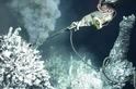 足以熔化鉛塊的海底熱泉