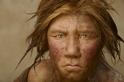 基因分析顯示,尼安德塔人形成小而孤立的群落