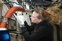 火星任務會讓人類生病嗎?快來一探究竟!