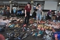 海龜要回家─淺談台灣海洋危機