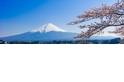 【城市啡聞】富士山下的一抹綠(Sponsored)