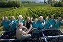 【酩品生活】葡萄酒世界的頂級風土(Terroir)—法國波爾多