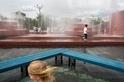 都市裡的水柱叢林