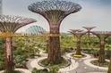 新加坡如何實現人口稠密的宜居城市?