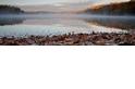 梭羅的湖濱,至今仍是靈感泉源