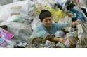 每日酷知識:「耕耘」都市垃圾的拾荒者