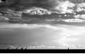 塞倫蓋蒂大草原