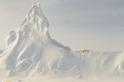 冰山上的北極熊