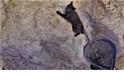 喵嗚~ 救命啊! 受困懸崖的小黑貓大救援