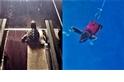 「衝衝衝」 為了科學 海龜寶寶也上了跑步機!