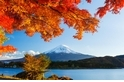 品味靜岡‧初秋楓紅的迷人