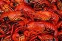 一生必遊美食天堂—美國路易斯安那州的阿卡迪亞美食