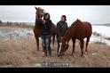 馬背上的民族:獨特的牽繫