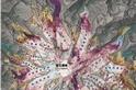 流失中的雷尼爾峰冰河