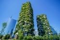 為城市扦插一座森林