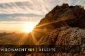 101環境教室:荒漠