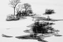 日本:雪景