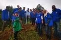 種樹救地球的條件──愛地球 用對方法不踩雷