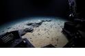 深海驚見「幽靈章魚」