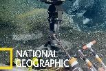 以甲烷為食的深海微生物群落