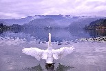10月的布萊德湖