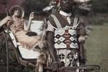 影像資料庫:1930年代,南非