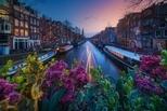 阿姆斯特丹之春