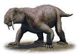 化石顯示,並非所有的劍齒動物都是掠食者!