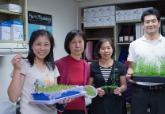 「打開植物學課本,就像回到家啊!」發現葉綠體蛋白質橋樑的李秀敏
